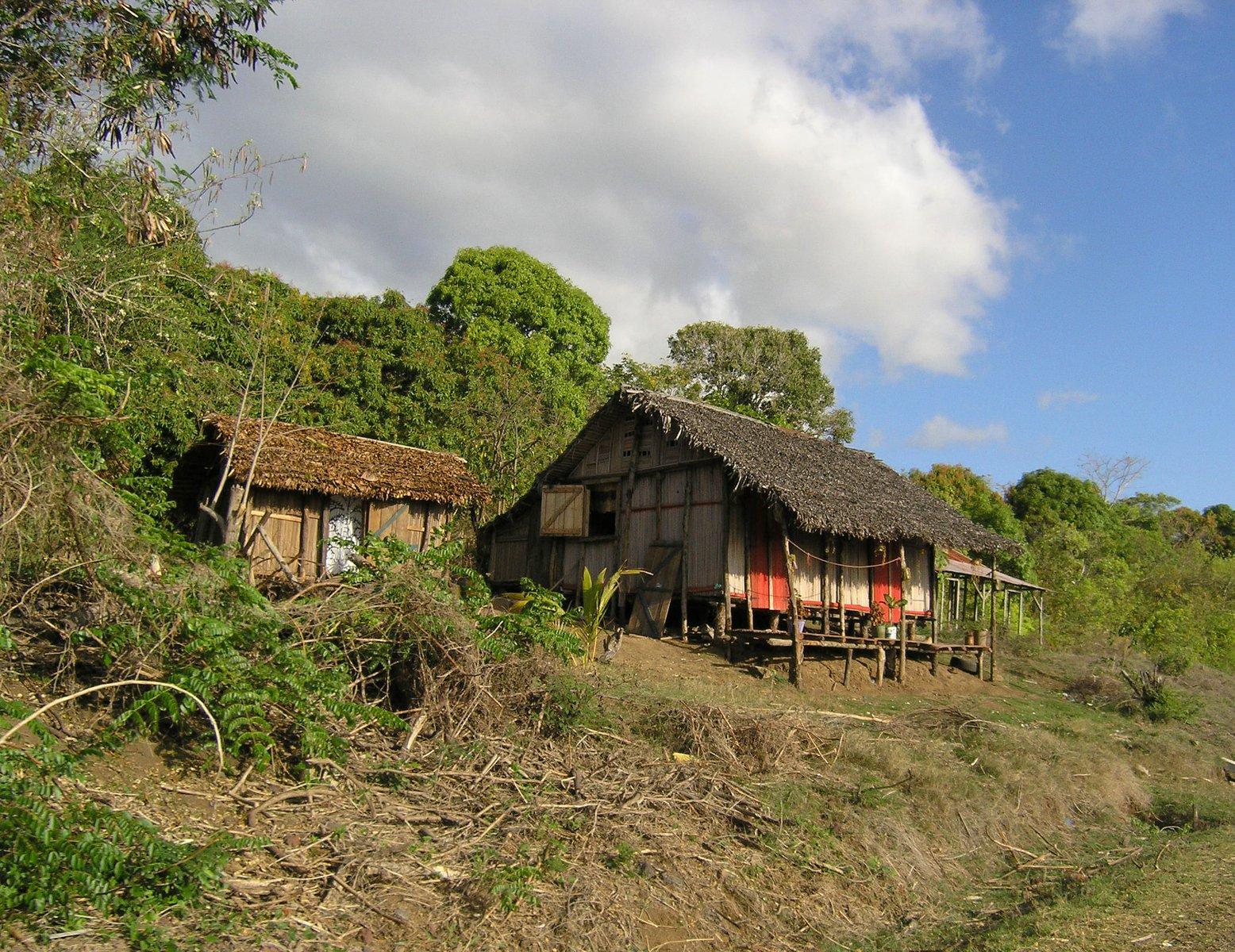 people of madagascar rainforest