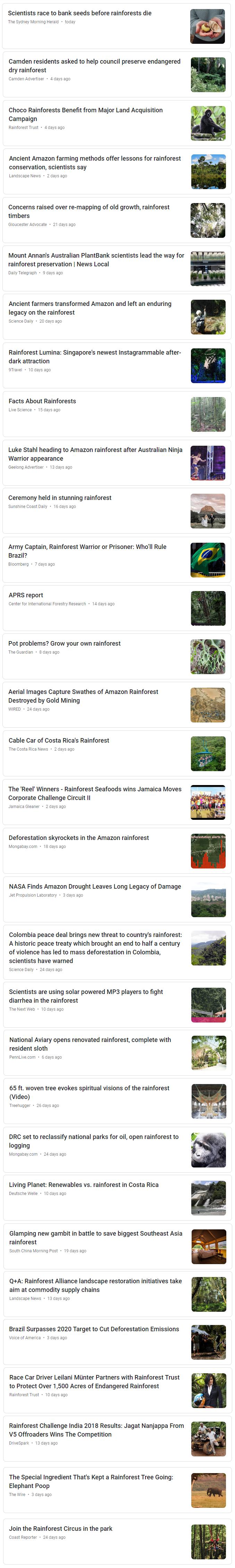 rainforest news